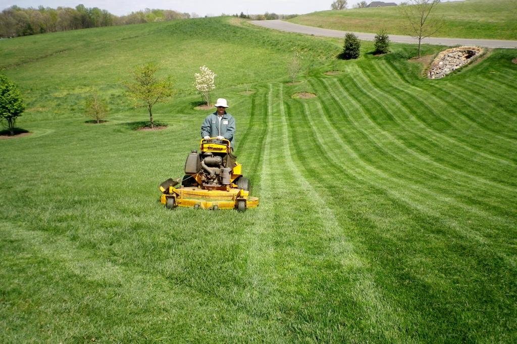 man on yellow riding mower cutting stripes in grass in northern virginia