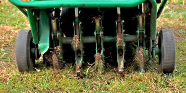 Aeration tool running through the grass