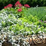 garden planter great falls virginia