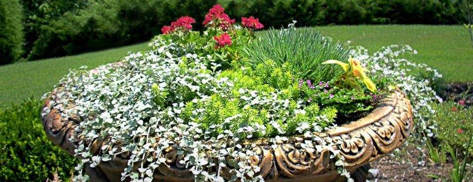 summer garden planter ashburn virginia