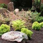 planting landscaping great falls virginia