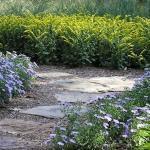 garden stone walkway landscaping in northern virginia