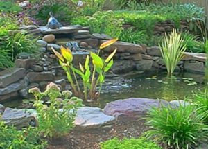 stone pond water feature design build in northern virginia