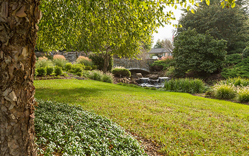 Northern Virginia Landscape Sunrise Landscape and Design