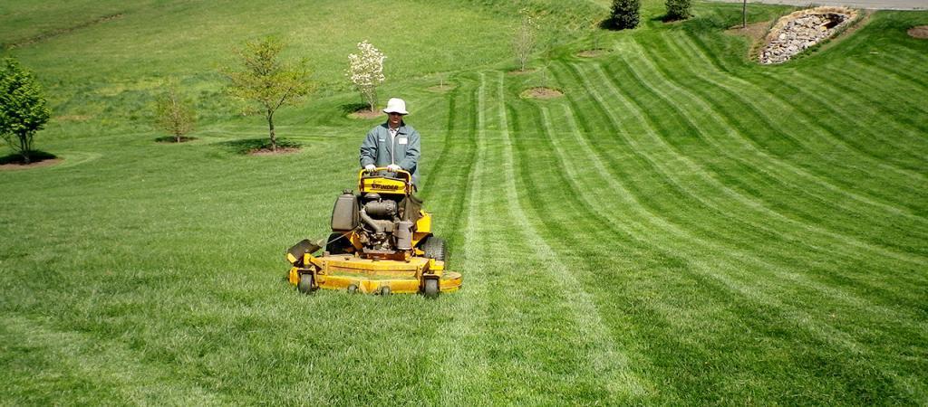 Lawn maintenance in Great Falls, Virginia