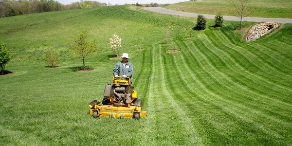 lawn mowing leesburg, great falls, ashburn, willowsford, reston, herndon
