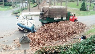 Leesburg leaf removal services Northern Virginia