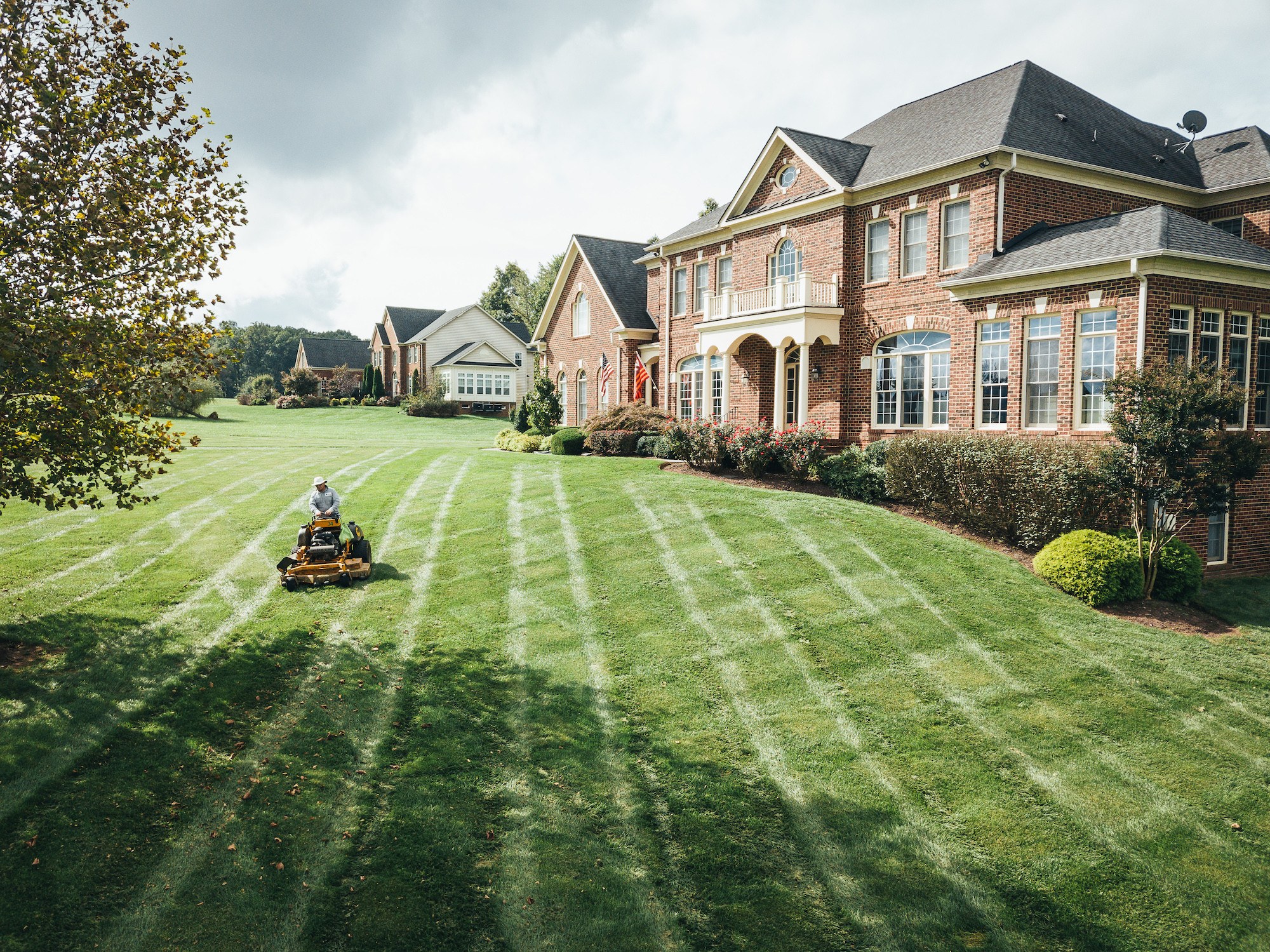 lawn care and mowing services for virginia estates
