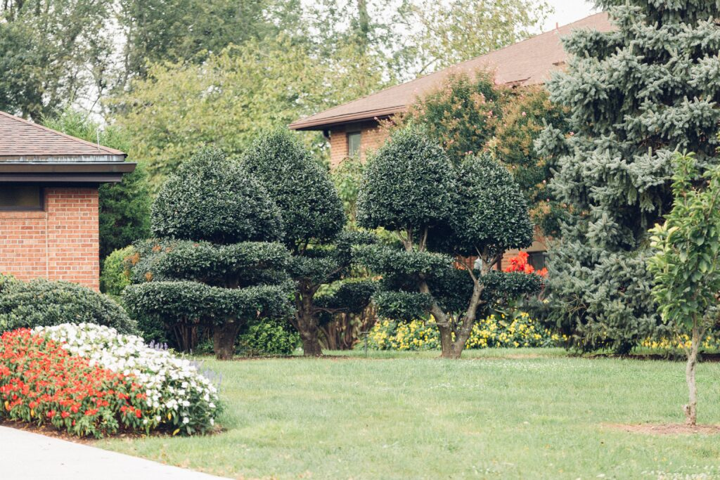 Benefits of Landscape Design Northern Virginia
